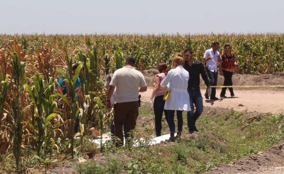 Supera Sinaloa la cifra de 600 homicidios en 2017
