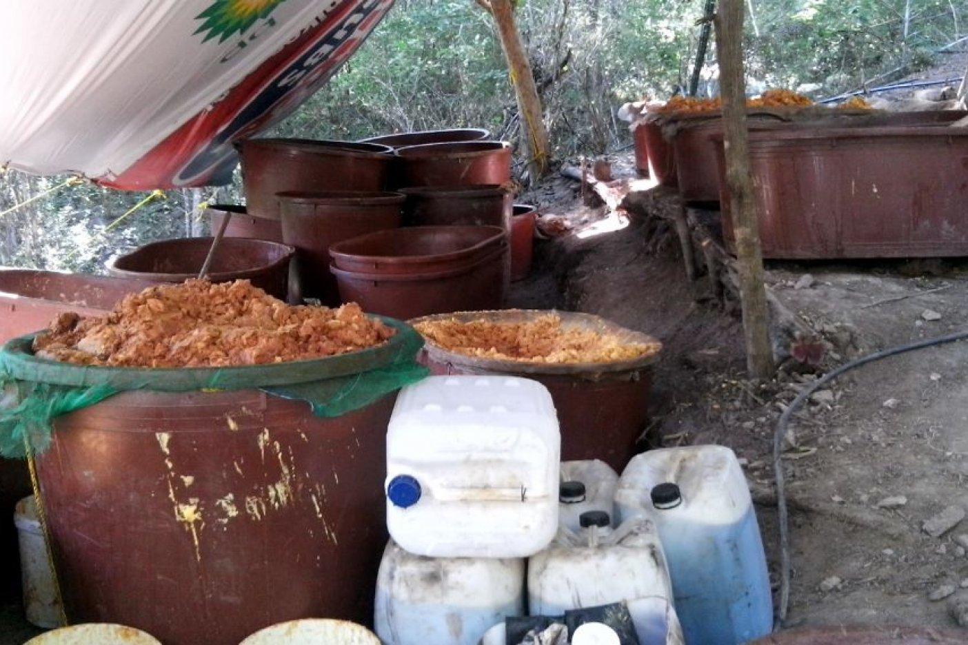 Marina destruye 9 narcolaboratorios en Sinaloa