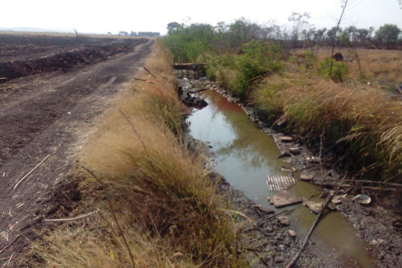 Mueren 19 en enfrentamiento en Sinaloa