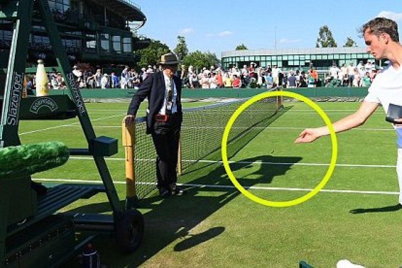 Eliminaron a Stan Wawrinka en primera ronda de Wimbledon